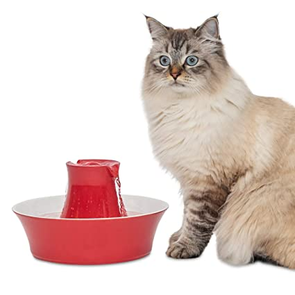 Charitable Ceramic Kitty Feeding Bowl Red With Black Kitty Paw Prints Cat Supplies