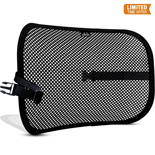 Adjustable Lumbar Support Cushion - Mesh Lumbar Back Support Cushion - Breathable Fabric, Sturdy Frame, Non Slip Gripper Adjustable Straps Ergonomic Designed For Comfort And Lower Back Pain Relief - Suitable For Desk, Office Chair, Car