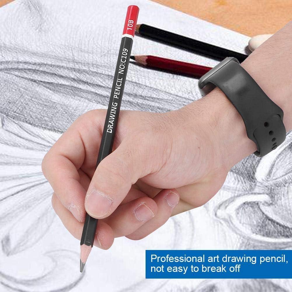 Huairdum L/ápices de Arte de carb/ón Conjunto de l/ápices Profesional Dibujo de Arte Profesional Dibujo l/ápices Papeler/ía para Pintar Arte Papeler/ía Set Regalo de Estudiante con Caja de Hierro