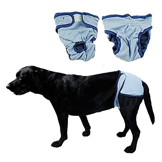 Amazon.com : Yueunishi Dog Pants, Female Dog Physiological Pants, Diapers, Pet Clothes, Dog Menstrual Pants Puppy Diaper Nursing Reusable and Washable ...