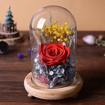 Amazon De Hcp Zsh Ewige Blume Geschenkbox Glas Dekoration