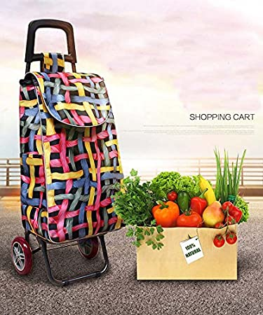 Buy Parasnath Foldable Metal Shopping Trolley