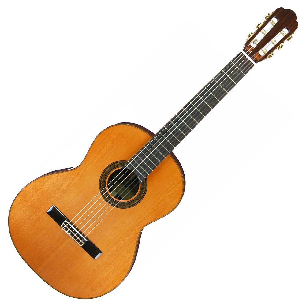 ARIA アリア クラシックギター ソフトケース付 A-50C B004V6PO78