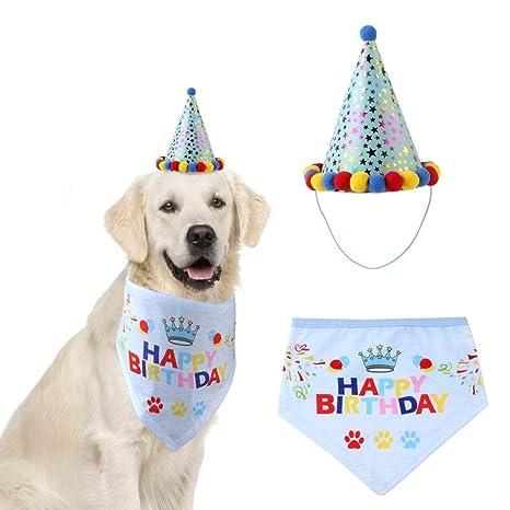 Kitabetty Sombrero de fiesta de cumpleaños para perros ...