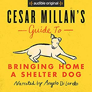 Cesar Millan's Guide to Bringing Home a Shelter Dog Hörbuch