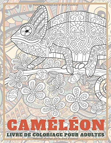Cameleon Livre De Coloriage Pour Adultes French Edition Paquin Lina 9798639261732 Amazon Com Books