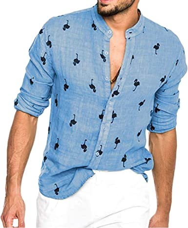 YUANDONGXING Camisa De Estampado Flamenco Hawaiano para Hombres Camisa De Manga Larga con Botones Camisa De Lino Casual Delgada De Verano para Hombre: Amazon.es: Ropa y accesorios