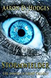 Stormwielder (The Sword of Light Trilogy Book 1)