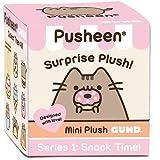 ENESCO Gund Pusheen Boîte surprise contenant une peluche de Pusheen, le chat