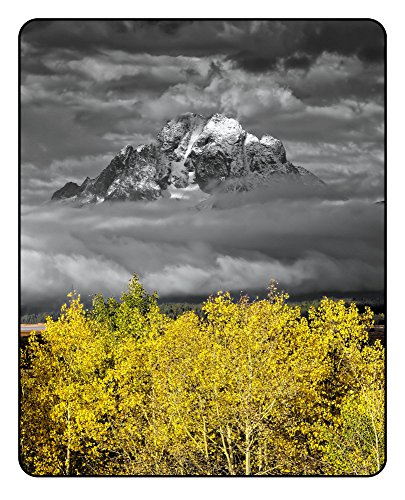 Mt. Moran with Aspens - Grand Teton National Park, Jackson Hole Valley, Wyoming, USA - Original Photography Aluminum Metal Art Print Gift with Bamboo Stand for Office Decor, Desk Accessories, (Mt Moran Grand)