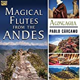 Magical Flutes From The Andes - Aconcagua by Pablo Carcamo