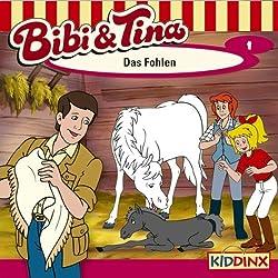 Das Fohlen (Bibi und Tina 1)