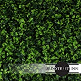 Artificial Hedge - Outdoor Artificial Plant - Great Boxwood and Ivy Substitute - Sound Diffuser Privacy Fence Hedge - Topiary Greenery Panels (12, Indian Aster)