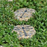 Miniature Fairy Garden Stepping Stones, Dragonfly, Set of 4