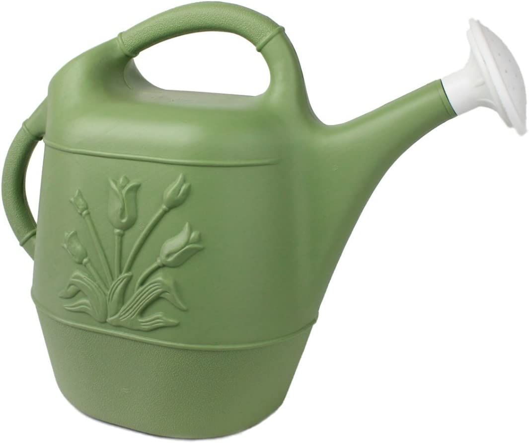 Union 63068 Watering Can with Tulip Design, 2 Gallon, Sage Green : Garden & Outdoor