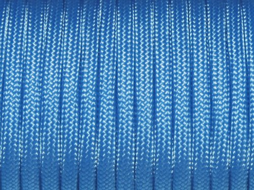 7 Strand Core 550lb Paracord Parachute Cord Lanyard Mil Spec Type III-100ft (Sky Blue(24#)) - Sky Type