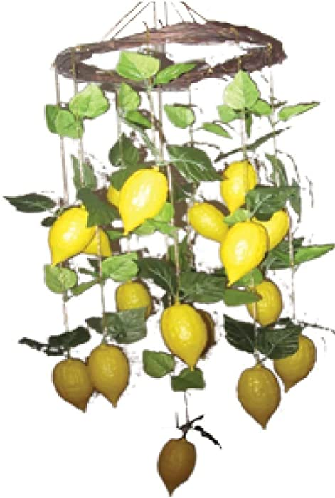 The Dreidel Company Sukkot Decorations - Fruit Garland Decor - Etrog and Small Fruit Garland - Perfect for Any Sukkah (4 Pack Variety)