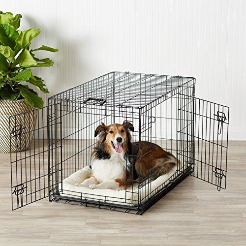 AmazonBasics-Double-Door-Folding-Metal-Dog-Crate-Medium-36x23x25-Inches