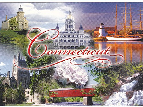 STATES2CON - CONNECTICUT - CONSTITUTION STATE, Statehood: Jan 9, 1788; Capital: Hartford; State Flower: Mountain Laurel; A U.S. State POSTCARD .. from - Stores Park Laurel