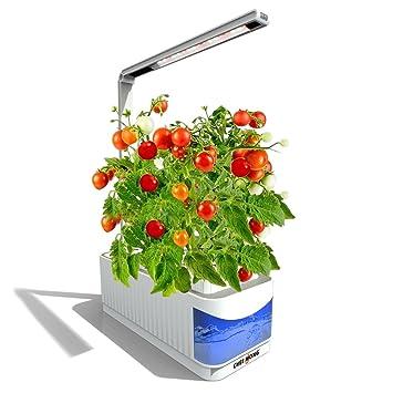 hydroponic herb garden. Indoor Hydroponic Herb Garden Kit Lamp, Desk Lamp For Reading, Smart Fresh R
