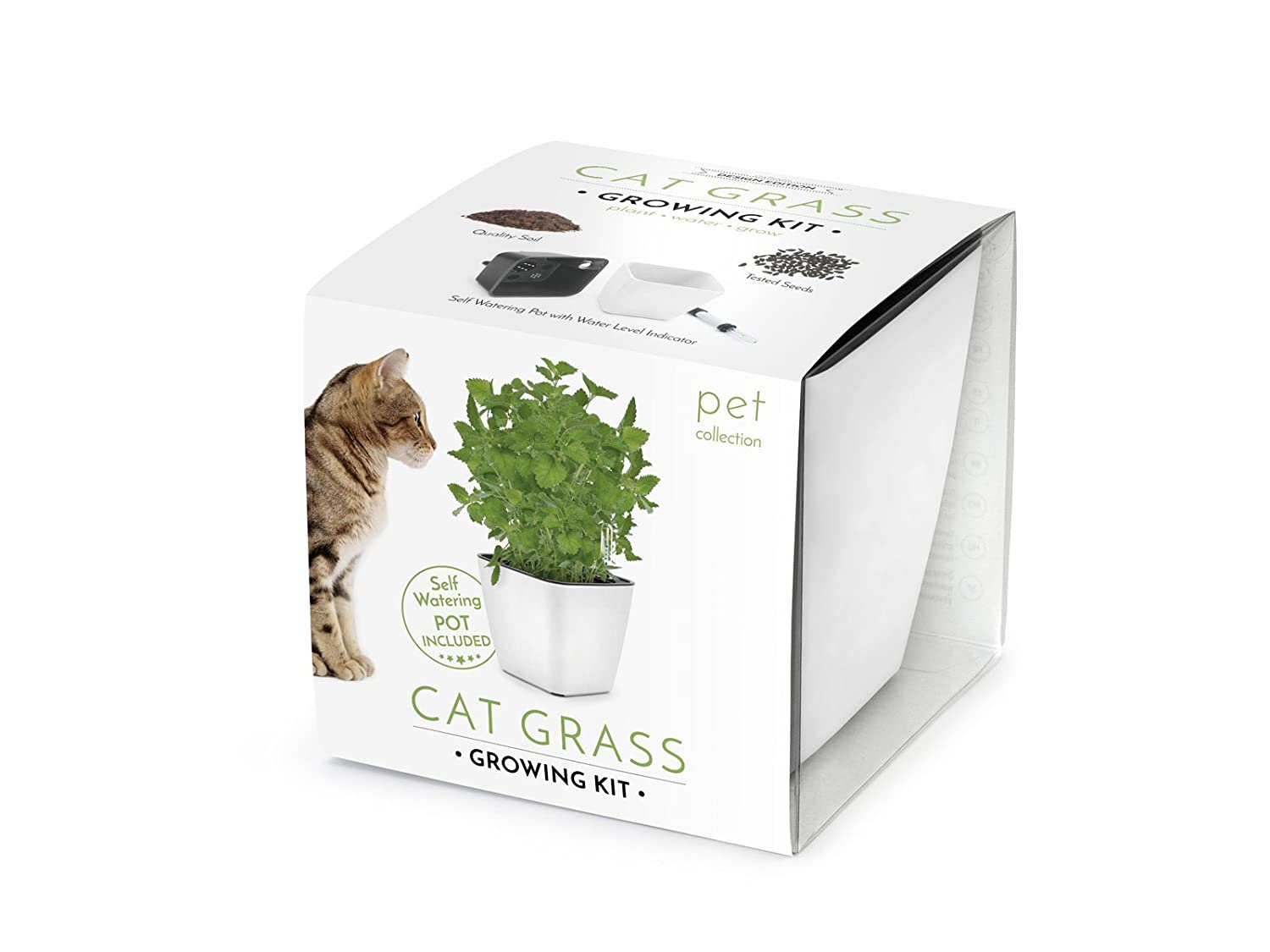 Katzengras-Anbaukit (Cat grass growing kit) Domestico, All-In-One-Set, Set mit Selbstbewässerungstopf, Substrat und Samen (Weiß) VISO TRADE