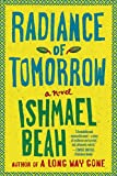 Front cover for the book Radiance of Tomorrow by Ishmael Beah