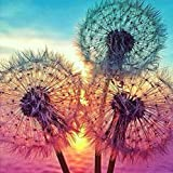 Diamond Painting Kits for Adults and Kids, Sunset Dandelions Plants Picture Art 5D Full Drill Art Diamond Paingtings by…