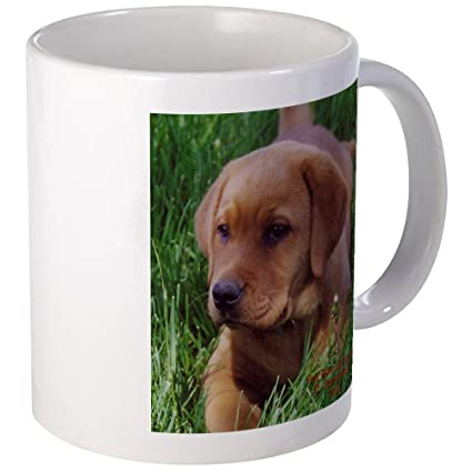 Amazoncom Cafepress Fox Red Lab Puppy Mug Unique Coffee Mug