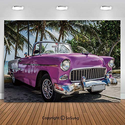 Material: Vinyl & Computer Painted(Not Washable) Color:As picture shown Features:Light Absorption,Non-reflective Size:We have 22 sizes for your to choice.Customized per Your Request  Preparation: 3-5 days Usage: For the Photography for Adults,Chi...