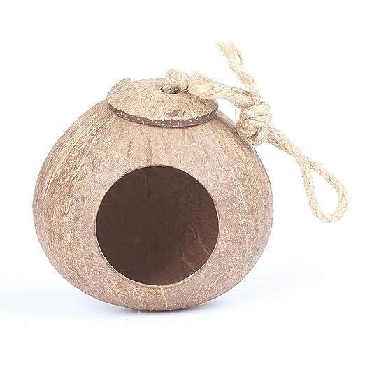 Cáscara Redonda de Coco Nidos de pájaros Casa pequeña Mascota ...