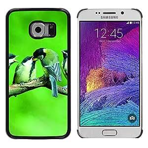 Paccase / Dura PC Caso Funda Carcasa de Protección para - Cute Birds Baby Nature Spring Green - Samsung Galaxy S6 EDGE SM-G925
