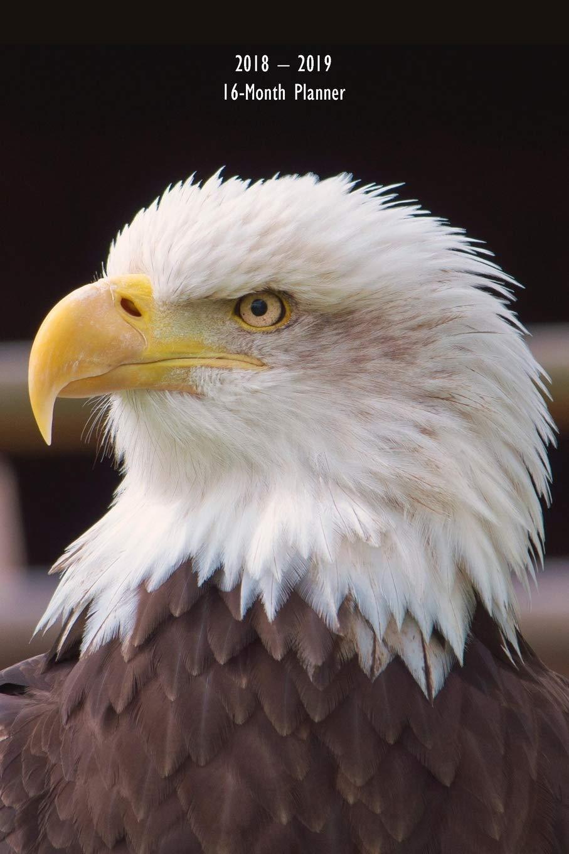 American Bald Eagle 16-Mo Planner Organizer 6