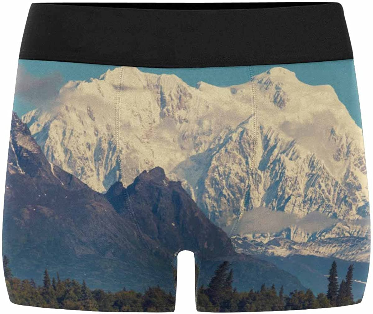 XS-3XL INTERESTPRINT Custom Mens All-Over Print Boxer Briefs Beautiful Mountain Landscape