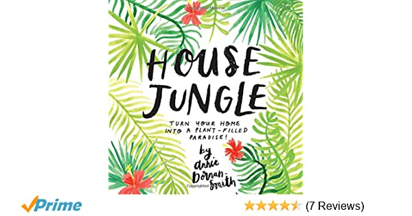 stylist lily house plant. House Jungle  Turn Your Home into a Plant Filled Paradise Annie Dornan Smith 9781612129440 Amazon com Books