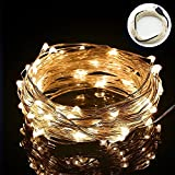 String Lights,Bienna [Waterproof] [USB Powered] 100 LED 33ft/10M Silver Wire Starry Fairy Lighting for Bedroom Indoor Outdoor Patio Yard Home Wedding Christmas Xmas Holiday Halloween Party-Warm White