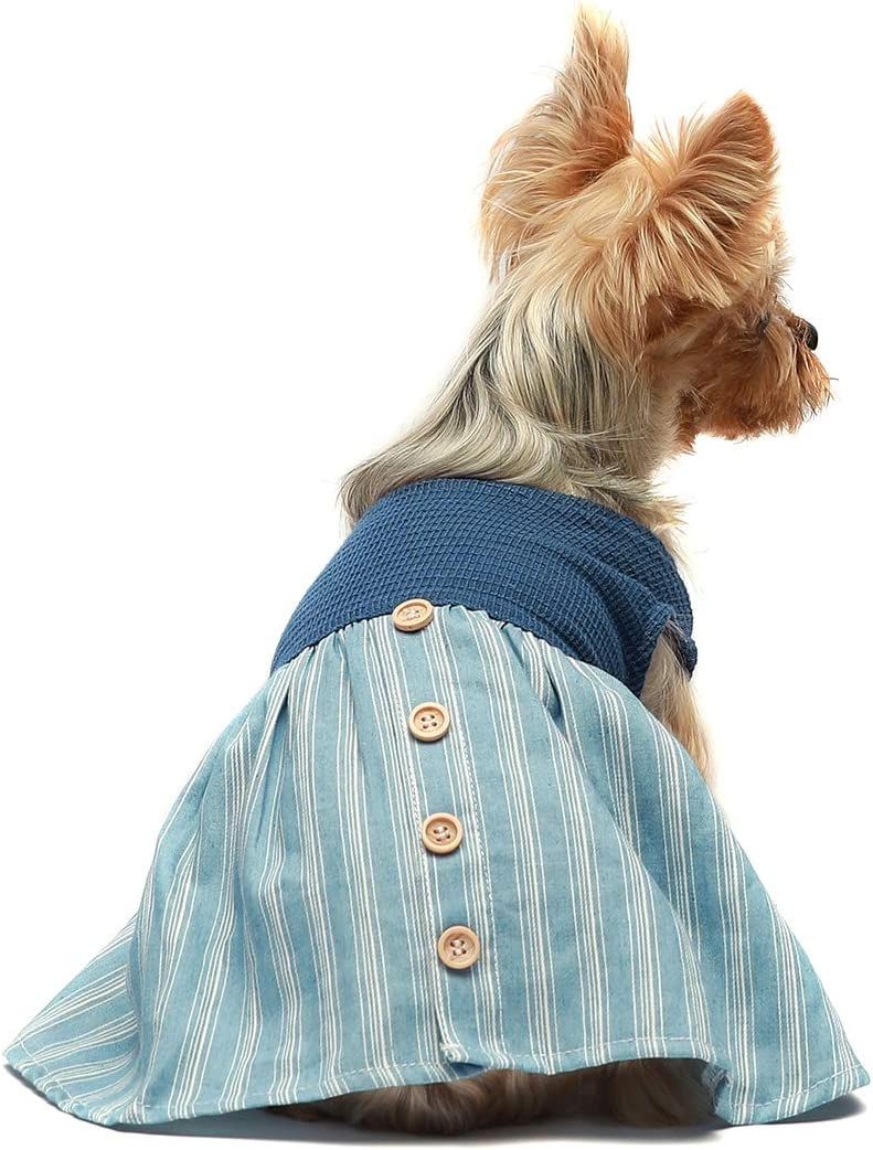 Lookvv Girl Dog Party Clothes,Puppy Small Dog Autumn Winter Outfit Pretty Sweater with Big Bow