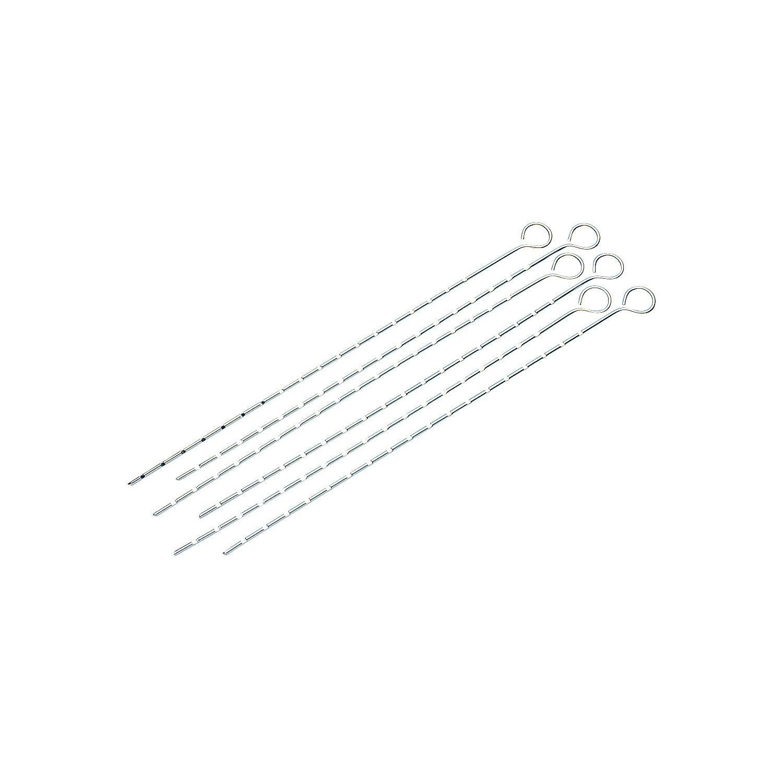Campingaz 205826 - Pinchos brochetas, sencillos, cromados, 6 unidades, 40 cm ADG Campingaz