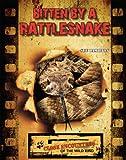 Bitten by a Rattlesnake