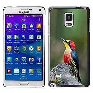 Caucho caso de Shell duro de la cubierta de accesorios de protección BY RAYDREAMMM - Samsung Galaxy Note 4 SM-N910 - Spring Tropical Songbird