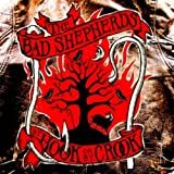 By Hook Or By Crook by Bad Shepherds (2010-11-23)