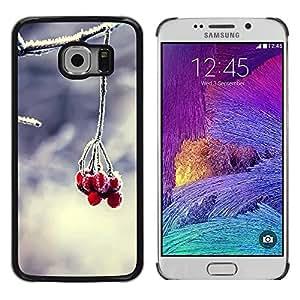 Be Good Phone Accessory // Dura Cáscara cubierta Protectora Caso Carcasa Funda de Protección para Samsung Galaxy S6 EDGE SM-G925 // Fruit Macro Forsted Berries