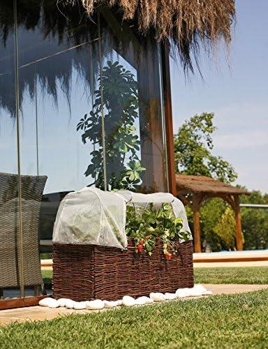 Catral 71080010 - Mosquitera para huerto urbano Kit Planter, 100 x ...