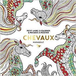 Coloriage Cheval Zen.Le Petit Livre Du Coloriage Chevaux Amazon Fr Collectif