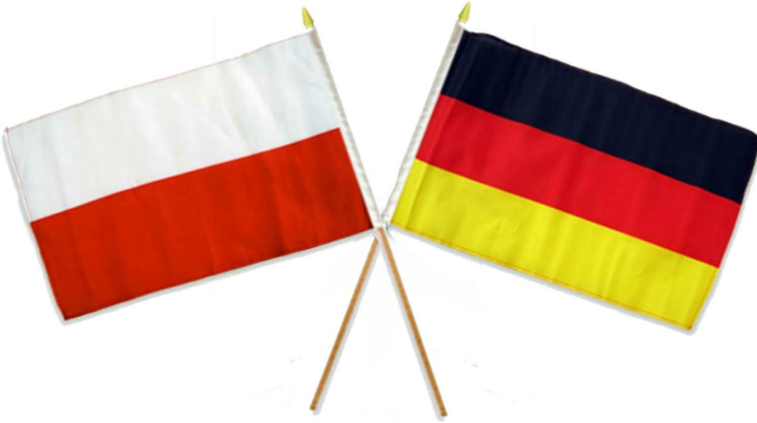 "12x18 12/""x18/"" Wholesale Lot of 12 German Germany Eagle Stick Flag wood staff"