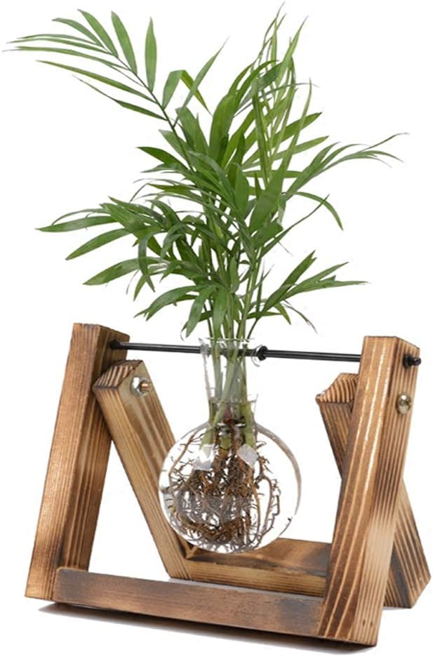 Plant Terrarium with Wooden Stand, Air Planter Bulb Glass Vase Metal Swivel Holder Retro Tabletop for Hydroponics Home Garden Office Decoration