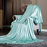 Pure silk quilt cover single piece Thickened double-sided pure silk quilt-D 220x240cm(87x94inch)