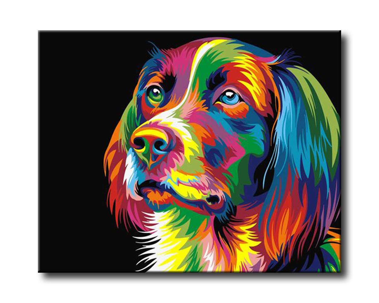 adulto Paint by number Kits Shukqueen DIY dipinto a olio Framed Canvas acrilico painting-colorful Dog 40,6/x 50,8/cm