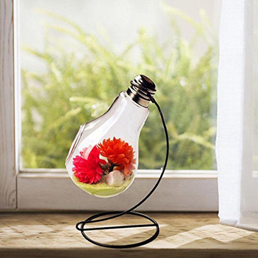 Da WA claro bombilla jarr/ón cristal jarr/ón flores planta colgante jarr/ón con 1/agujero y hierro para colgar soporte para boda Decor