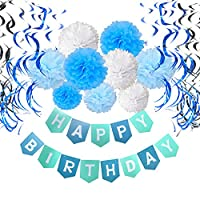 Birthday Decorations, Cocodeko Happy Birthday Banner Bunting with Tissue Paper Pom Poms and Hanging Swirl Decor for Birthday Party Decorations - Blue, Sky Blue and White