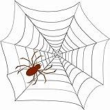 AYOGU Spiderweb